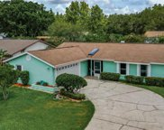6108 Rain Hollow Court, Tampa image
