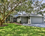 1081 Red Maple Way, New Smyrna Beach image