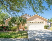 16143 Egret Hill Street, Clermont image