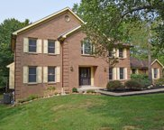 900 Trevino  Court, Pierce Twp image