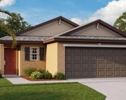 13329 Willow Bluestar Loop, Riverview image