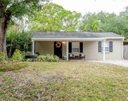 4017 S Renellie Drive, Tampa image