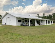 15362 FOREST TRAIL RD, Jacksonville image