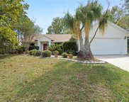 11732 Grand Bay Boulevard, Clermont image