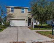 11263 Running Pine Drive, Riverview image