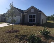 188 Long Leaf Pine Dr., Conway image