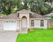 914 W Knollwood Street, Tampa image