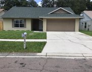 7241 Hollowell Dr, Tampa image