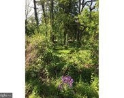 6085 Upper Mountain Rd, Solebury image