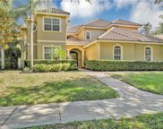 11226 Macaw Court, Windermere image