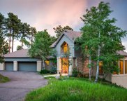 1204 Snowberry Drive, Golden image