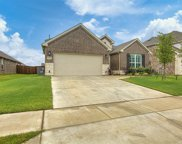 908 Basket Willow Terrace, Fort Worth image