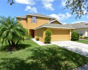 20714 Whitewood Way, Tampa image