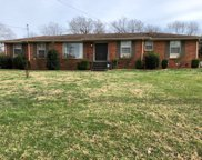 182 New Shackle Island Rd, Hendersonville image