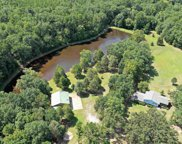 435 Long Pine Road, Chapin image