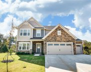 199 Sutters Mill  Drive, Troutman image