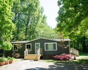 123 Guill Ln, Cottontown image
