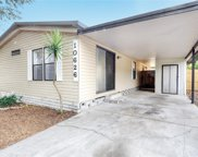 10626 Bay Hills Circle, Thonotosassa image