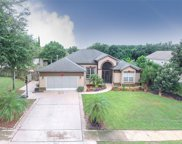 14251 Pine Cone Trail, Clermont image
