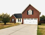 1002 Betty Lou Ln, La Vergne image
