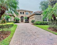 11208 Macaw Court, Windermere image