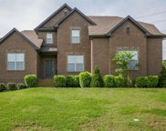 151 Brierfield Way, Hendersonville image