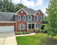 535  Cuxhaven Court, Fort Mill image