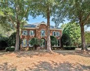 18716  Cannon Crossing Way, Davidson image