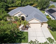 10261 Shadow Branch Drive, Tampa image