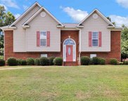 422 Woodland Ridge Rd, Odenville image
