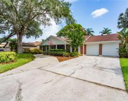 11401 Country Oaks Drive, Tampa image