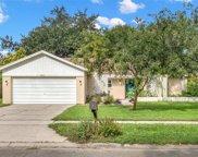 17810 Cranbrook Drive, Lutz image