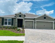 11752 Lake Lucaya Drive, Riverview image
