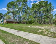1828 Wood Stork Dr., Conway image