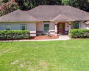 18829 Sw 93rd Loop, Dunnellon image