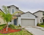 10018 Rosemary Leaf Lane, Riverview image