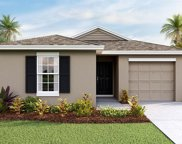 9113 Water Chestnut Drive, Tampa image