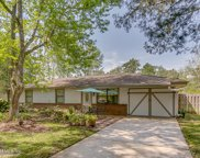 439 MELROSE AVE, Green Cove Springs image
