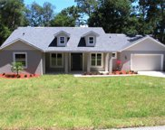 25115 Thornhill Drive, Mount Plymouth image