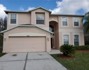 10433 Meadow Spring Drive, Tampa image