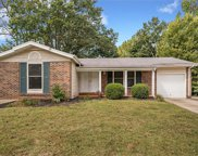 685 Green Forest Dr., St Louis image