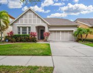 14637 Chatsworth Manor Circle, Tampa image