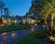 6530 Bottlebrush Ln, Naples image