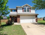 1005 Bakers Cove, Hutto image