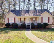 429 Kerri Dr, Center Point image