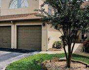 6132 Sunnyvale Drive, Orlando image