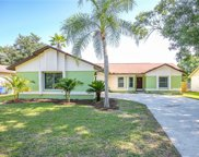 17503 Willow Pond Drive, Lutz image