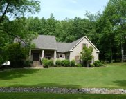 111 Kimberly Ln, Pleasant View image