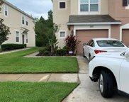 26541 Castleview Way, Wesley Chapel image