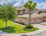 10333 Willow Leaf Trail, Tampa image